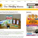 Latest Freelance Work: The Thrifty Mama