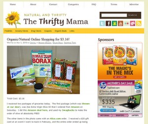 Latest Freelance Work: The Thrifty Mama
