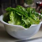 Fresh Garden Salad with Fried Tofu