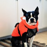 Clive + Lifejacket