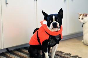Clive + Lifejacket
