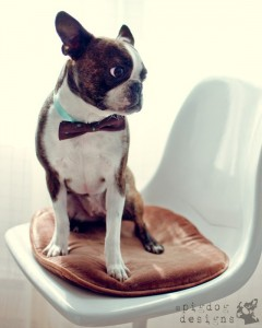"""Dapper Hugo"""