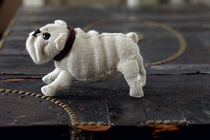 Best-in-Show-English-Bull-003