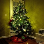 Friday Link-Up + Christmas Tree