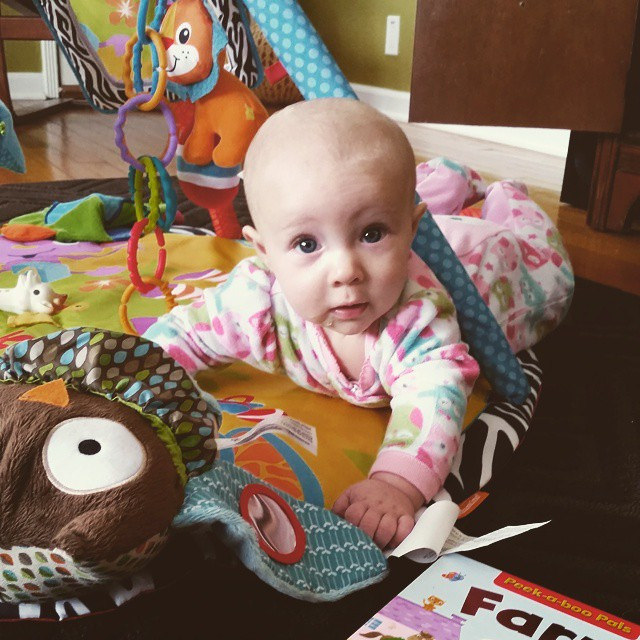 Kaitlan 5 month update! - Kohler Created