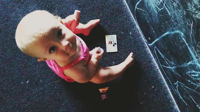 1 year old beeb - Kohler Created