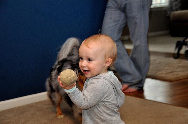 Toddler Thanksgiving - Kohler Created